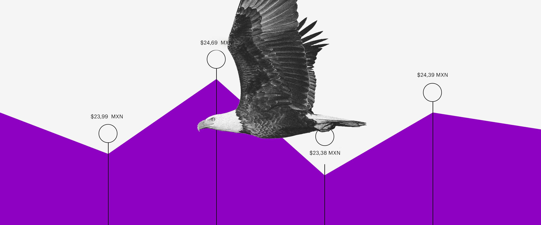 sube el dólar y águila vuela sobre gráfica